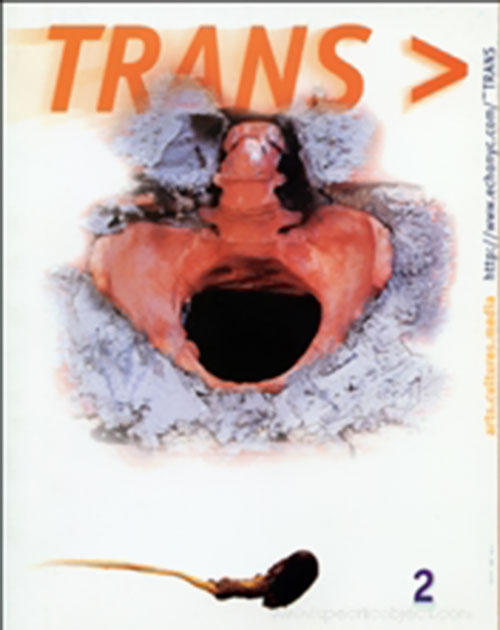 Trans 2 Virtual read